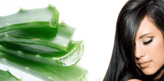 Beneficios que proporciona el champú con aloe vera